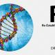 R5 Reestablishing Methylation Turning Genes On/Off and Gene Expression