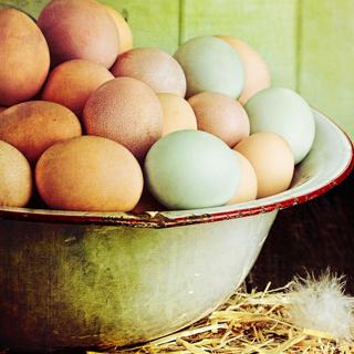 Healing Foods - Free-Range Eggs