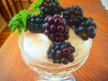 Coconut Lime Custard with Blackberries