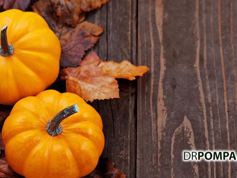 Pumpkin Favorites
