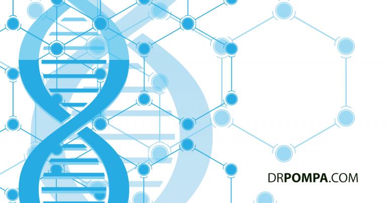 Epigenetics: The Science of Epigenetics For Cellular Health