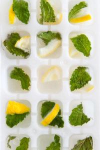 fruit-icecubes